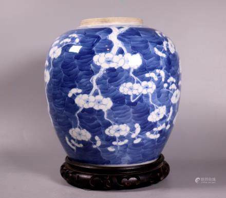 Chinese 19 C Blue & White Porcelain Hawthorn Jar