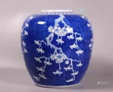 Chinese Blue & White Porcelain Hawthorn Ginger Jar