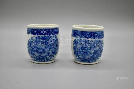 A pair of blue and white tea cup