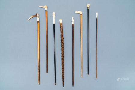 Eight mostly ivory-handled canes, one cactus cane, 19th C.