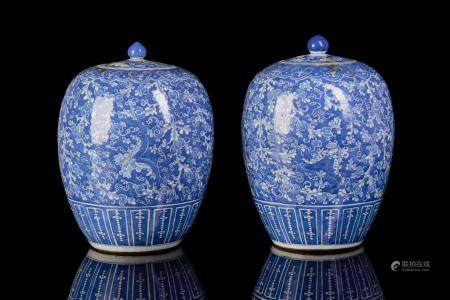 TWO RESERVE DECORATED BLUE & WHITE PORCELAIN JARS