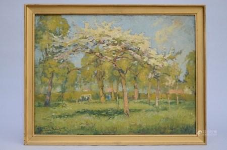 Broeckaert Herman: painting (o/c) 'the orchard' (60x80cm)