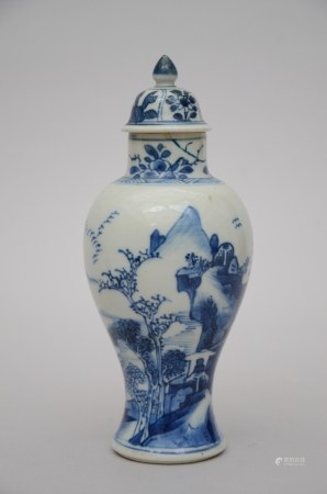 A Chinese blue and white vase, Kangxi period (*) (22cm)