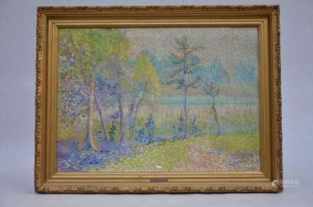Joris: pastel 'landscape with trees' (*) (83x61cm)