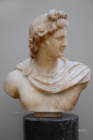 'Apollo' bust in alabaster on a scaglioli base, 19th century (50x54cm)
