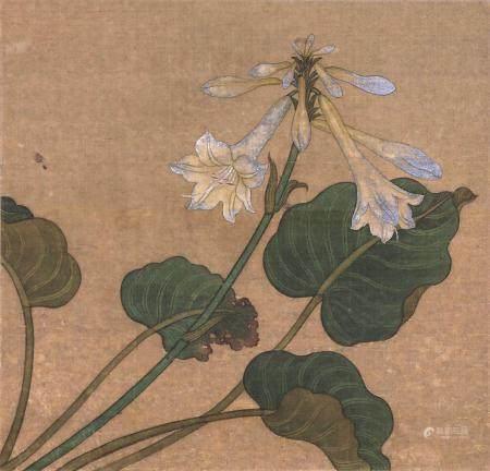 佚名 花卉 镜片 设色绢本