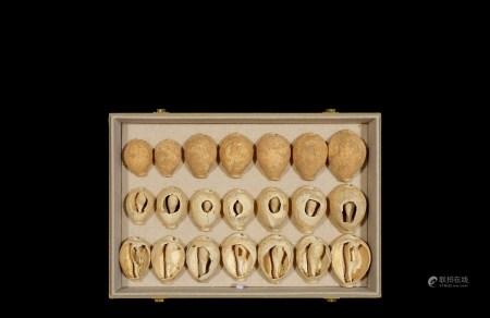 商•早、中、晚期大型贝币一组二十一枚