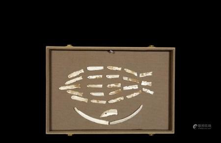 周•晋国鱼形蚌贝币一组二十五枚