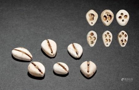 夏•鸡骨白玉贝币(一、二、三、四、五、六孔式)一组六枚