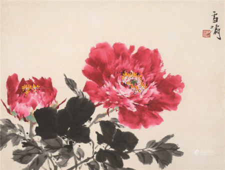 王雪涛(1903~1982)  富贵牡丹 镜心 设色纸本