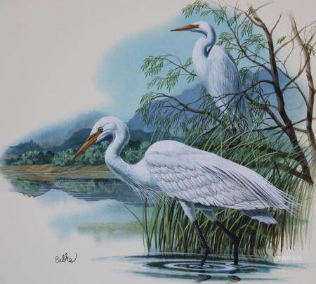 "Don Balke (B. 1933) ""Tennessee - Great Egret"""