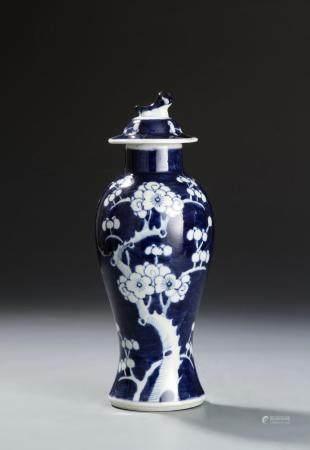 Chinese Blue and White Prunus Vase