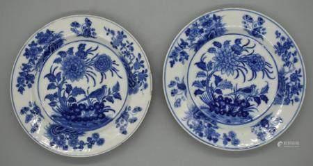 Pair of Kangxi Blue and white dish