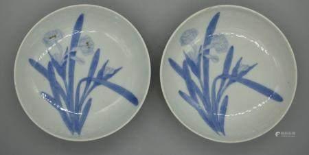 Pair of Royal Nabeshima daffodile dish