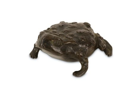 A 16TH CENTURY PADUAN BRONZE MODEL OF A TOAD