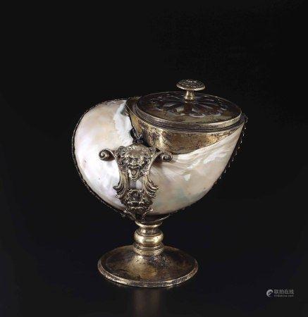 Conchiglia Turbo in foggia di coppa, montatura in bronzo,  - cm 20x13x21 -
