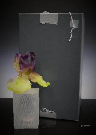 DAUM PATE DE VERE FALCAON PERFUME WITH IRIS IN BOX