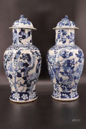 中国 - 龙纹青花瓷壶(一对)