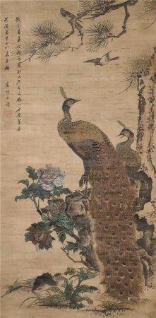 文徵明(1470~1559)  孔雀 镜心 设色绢本
