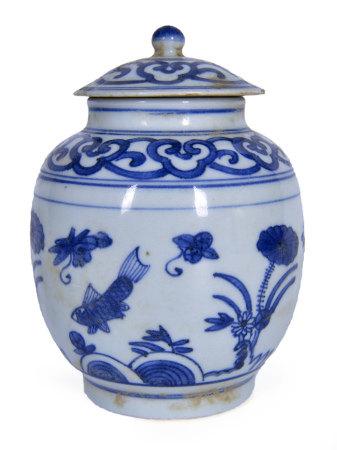 青花魚藻紋蓋罐