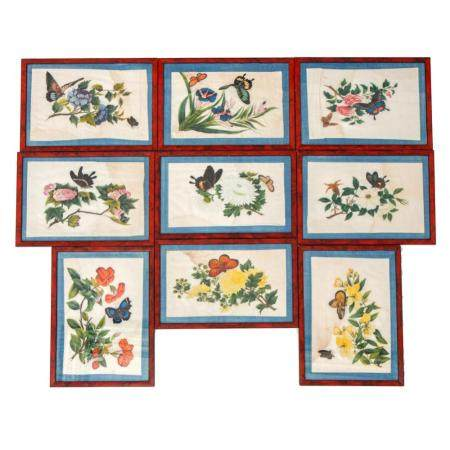 Nine Chinese paintings of flowers and butterflies on pith ri