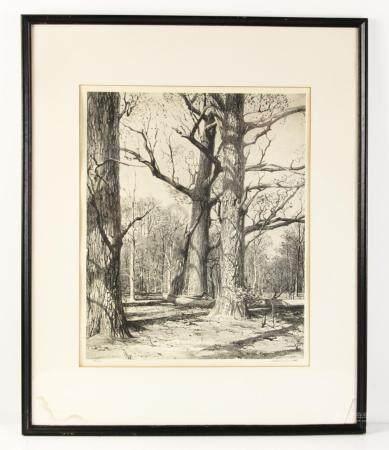 Stow Wengenroth, Woodland Scene
