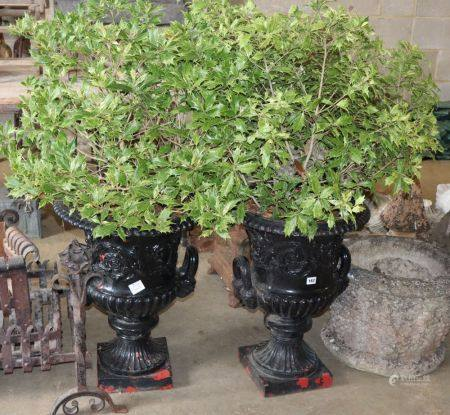 A pair of Victorian black painted cast iron two handled campana shaped garden urns, together with