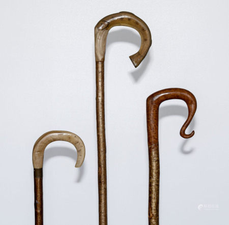 Three crooks two with horn handles, one modelled as a fish and one with a fruitwood handle.