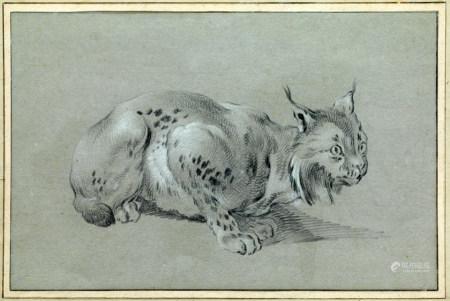 Jean-Baptiste OUDRY (Paris, 1686 - Beauvais, 1755) Lynx tapi  Pierre noire et rehauts [...]