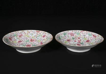 A Pair of Plates with Floral design