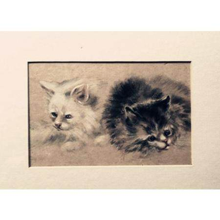 """""""Black and White Two Cats"""" Anonymous"""