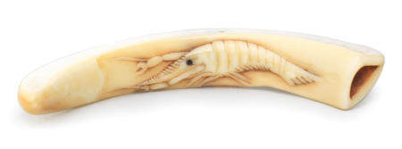 A small boar-tusk netsuke with a crayfish Iwami Province, early 19th century
