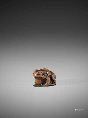 AN EARLY WOOD NETSUKE OF A TOAD