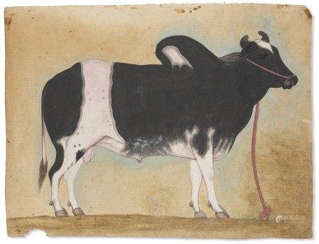 印度 公司画派 十九世纪 瘤牛图 INDIA, COMPANY SCHOOL, 19TH CENTURY