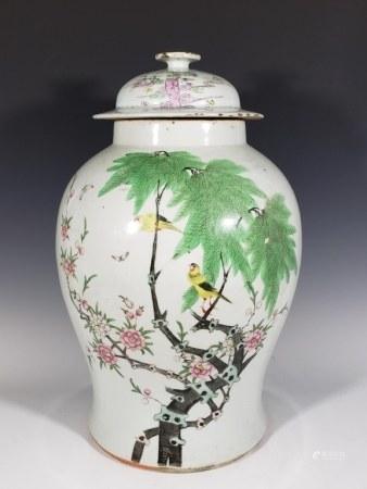 Chinese Famille Rose Porcelain Lid Jar