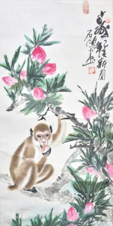 吳石鴻 猴