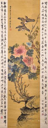 金夢石 花卉