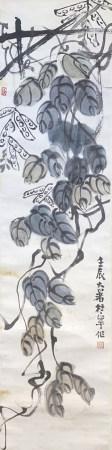 杜宇 花卉