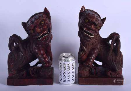 A LARGE PAIR OF LATE 19TH CENTURY CHINESE CARVED ROOT WOOD BUDDHISTIC DOGS modelled upon square plin
