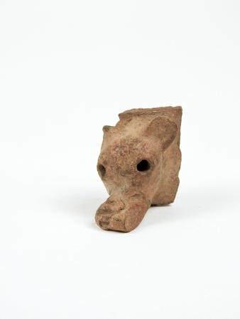 Importante tête animale Terre cuite 6,5 cm Amérique Précolombienne