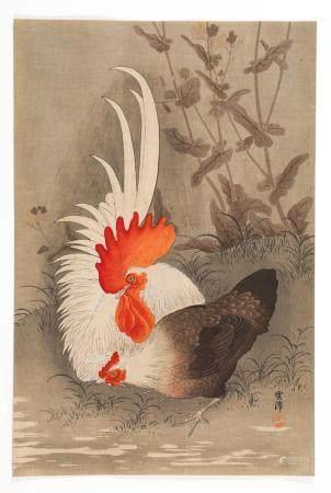 Ohara Koson (1877-1945), Japanese Woodblock Print, 'Rooster and Hen' FR3SHLM