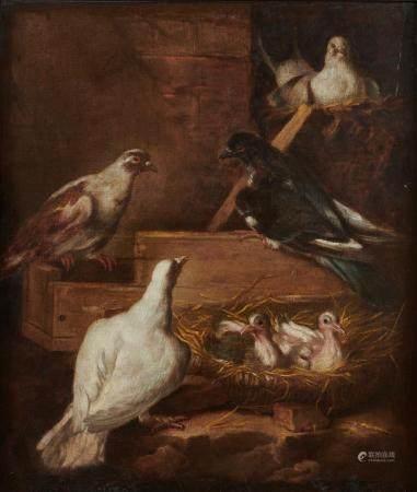Attribué à jacob Van de KERKHOVE dit CASTELLO (vers 1649-1712) Pigeons dans un [...]