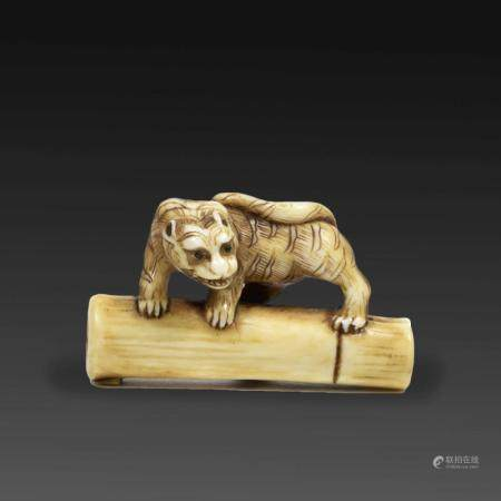 ~ NETSUKE  en ivoire, en forme de tigre debout sur une section de bamb