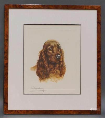 """Lithographie signée Danchin """"Cocker"""". 30x25 cm"""