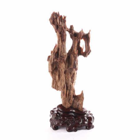 Wood fossil ornaments