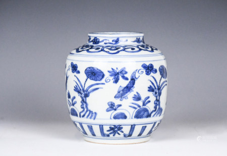 A Chinese Blue and White Jar, Ming