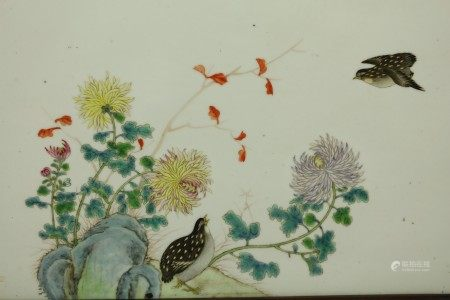 Framed Chinese Porcelain Plaque Painting of Birds and Flowers