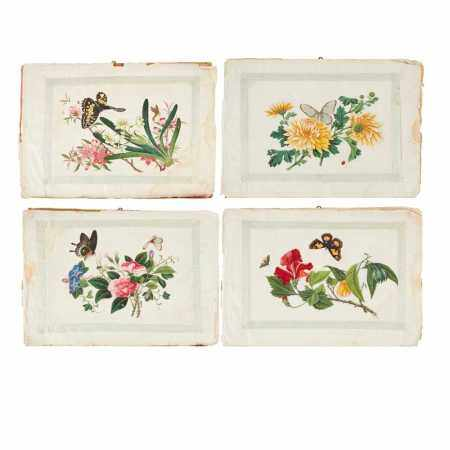 ALBUM OF TEN BOTANY BUTTERFLIES PITH PAINTINGS QING DYNASTY, 19TH CENTURY