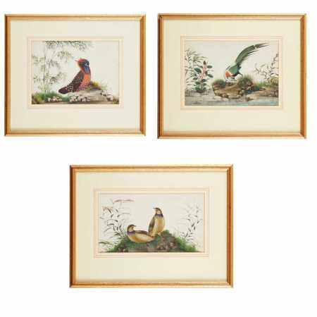 GROUP OF THREE PITH PAINTINGS OF BIRDS LATE QING DYNASTY-REPUBLIC PERIOD, 19TH-20TH CENTURY