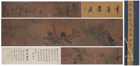 A Xu xi's fruits hand scroll